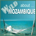 Wild About Mozambique